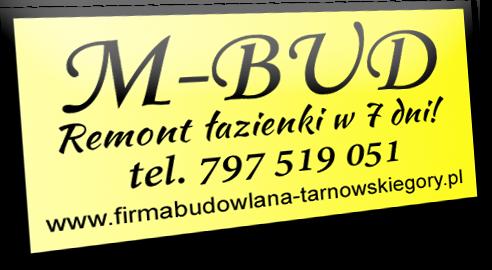 FUH MBUD Marcin Jaworski - wykonujemy kompleksowe remonty łazienek